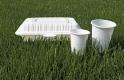 Hogy állnak a vendéglátósok az egyszer használatos műanyagok száműzésével?