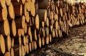 Rászállnak a tűzifa-kereskedőkre - mivel van a legtöbb baj?