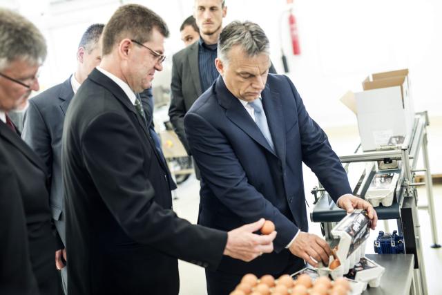 Orbán Viktor átadja a a lajosmizsei baromfitelepet és tojáscsomagoló üzemet. MTI Fotó: Miniszterelnöki Sajtóiroda / Burger Barna
