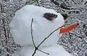 Beköszönt a tél: vasárnap már havazhat