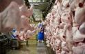 Ezért lesz drágább a baromfihús – lehet, nem is kevéssel