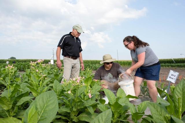 Don Ort, Paul South és Amanda Cavanagh, a kutatásban részt vevő tudósok. Fotó: Claire Benjamin/RIPE Project