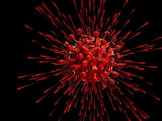 Egyetlen új halottja van a koronavírusnak - hónapok óta nem láttunk ilyet