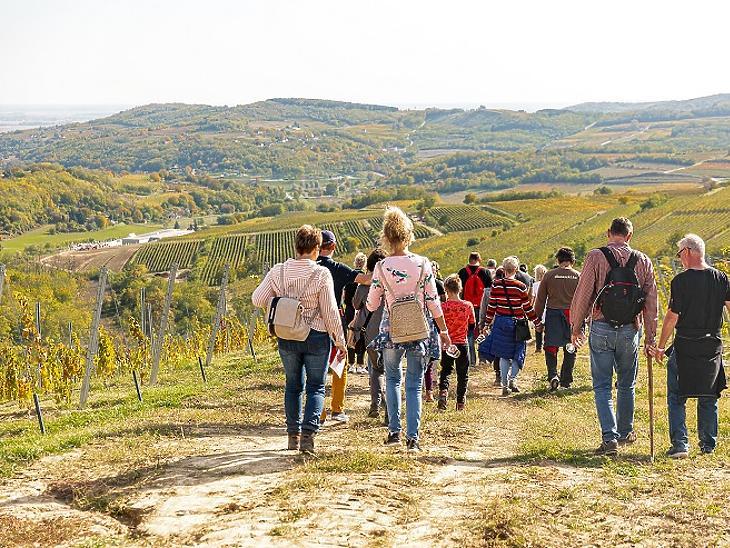 Így nyaralunk idén: Belföldi, szabadtéri és családi programokról szól 2021