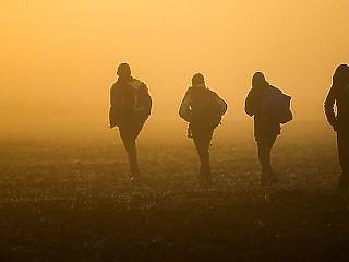 Magyarország elvesztette a kvótapert