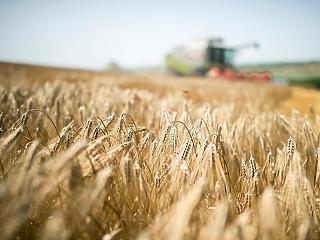 Jelentős a Magyar Bankholding szerepe az agráriumban