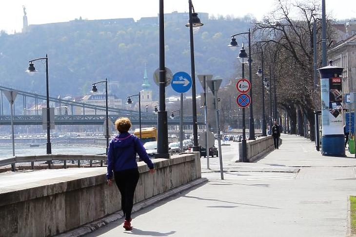 A nap képe: még pezseg az élet a Duna-parton