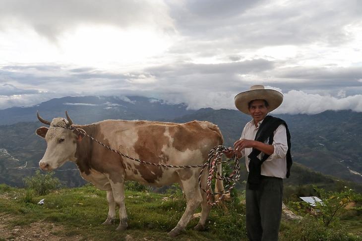 Peru a külföldi földrablók egyik fő célpontja. A képen Jose Mercedes Castillo, a perui elnökjelölt, Pedro Castillo testvére a vidéki Puna városában az Andokban. (Illusztráció. EPA/FRANCISCO VIGO)