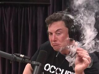 Elon Musk füvezése miatt átvilágítja a SpaceX-et a NASA