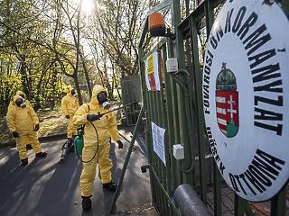 Csaknem ezren kapták el a koronavírust idősotthonban Magyarországon