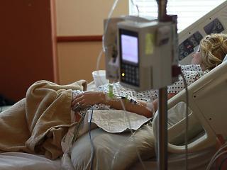 Új-Zélandi igen az eutanáziára