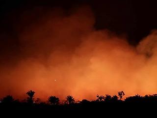 Bolsonaro: Brazíliának nincs elég pénze az amazonasi erdőtüzek megfékezésére