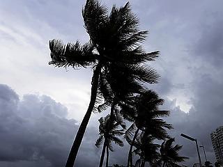 Rendkívüli állapot Floridában a közelgő hurrikán miatt