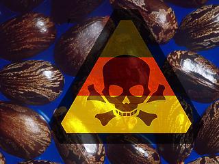 Biológiai támadásra készülnek Németországban