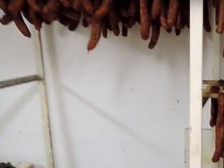 Mocsokban készült a kolbász: lecsaptak két gusztustalan boltra