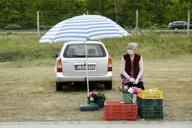 (Fotó: MTI/Koszticsák Szilárd)