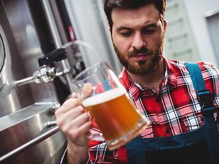 Olyan törvénymódosítást fogadtak el, amire csak kisüzemi sörrel lehet koccintani
