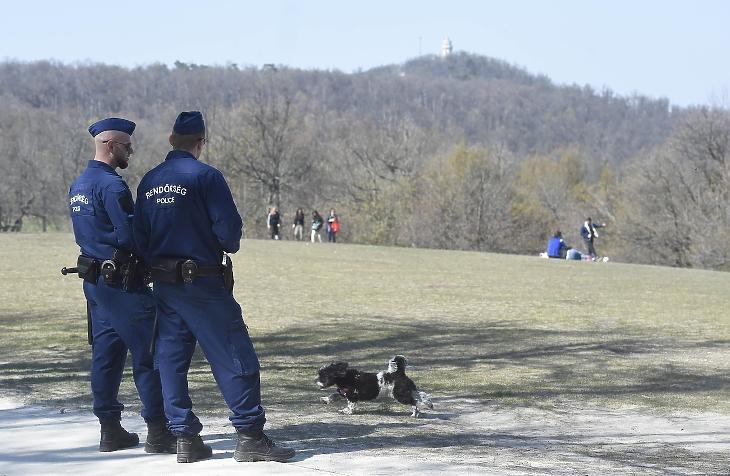 Rendőrök járőröznek Budapesten a Normafa közelében, az Anna-rétnél 2020. április 5-én. MTI/Bruzák Noémi