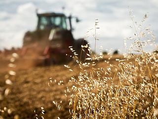 25 milliárd forint támogatást adnak az agrár- és élelmiszeripari cégeknek