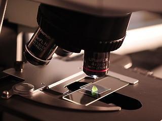 A COVID miatt is jól jöhet: a 4iG világszínvonalú orvos-kutatásba fogott a Pécsen