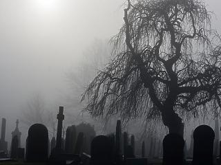 Gazdasági visszaélések miatt menesztettek budapesti temetővezetőket