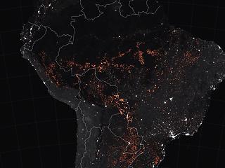 Nem magától lángol az Amazonas – brazil szakértőt kérdeztünk a katasztrófáról