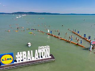 A többezres Balaton-átúszás nem veszélyes, csak a zenés, táncos rendezvények