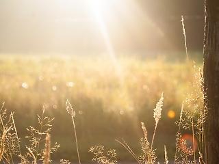 Szeszélyes tavasz – esők és felmelegedés is jöhet