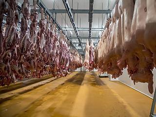 Esik a csirke és a disznó ára a koronavírus miatt