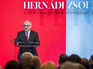 Két évet kapott Hernádi Zsolt Horvátországban