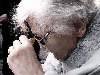 Hatalmas lépés az orvosoknak: megvan az Alzheimer-kór ellenszere?