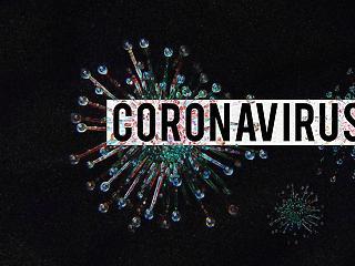 Új javaslat: applikációval ellenőriznék a koronavírus-védettséget?