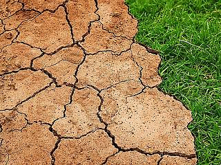 8 pontból áll a kormány klímavédelmi akcióterve