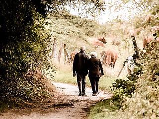 Nem élhetnek 30 éven keresztül nyugdíjasként az emberek