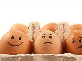 Veszélyes tojások kerülhetnek a magyar boltokba is