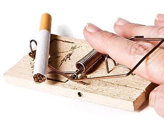 Ezt a 27 millió szál cigit biztos nem szívják már el a magyarok