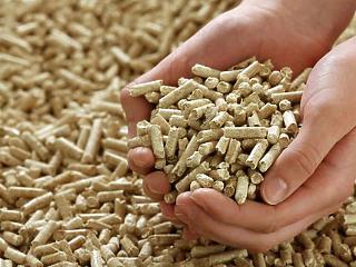 Egyre több biomasszát használnak energetikai célra