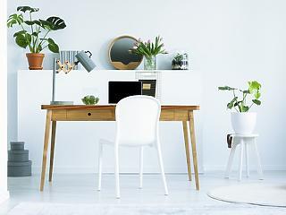 PP print - Útmutató az otthoni munkavégzés tökéletesítéséhez