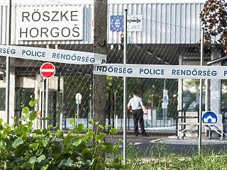 Több mint négyszáz határsértőt fogtak el a magyar határnál