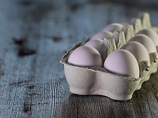 30 ezer darab tojás kellett a felcsúti focialapítvány három hónap alatt