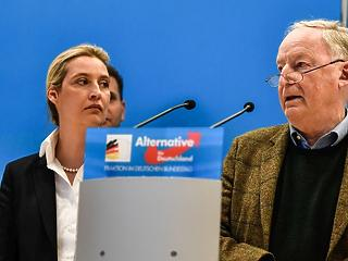 Össztűz alá vette a Merkel-kormány az AfD-t