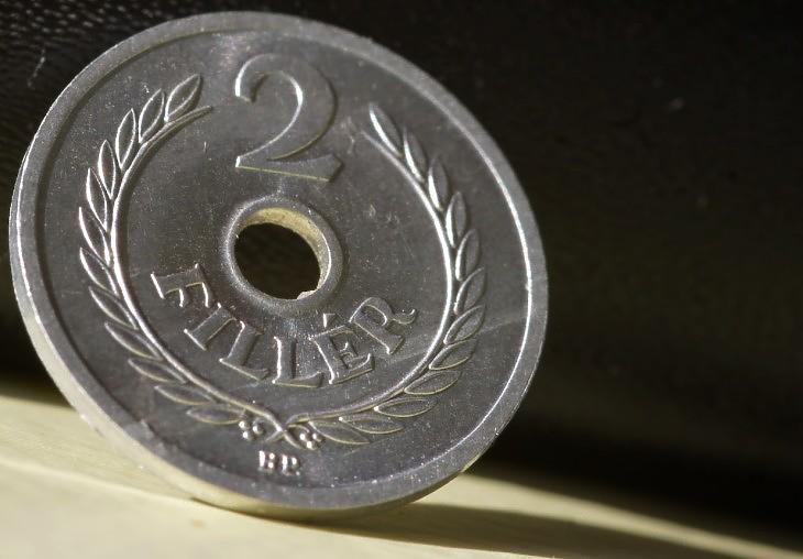 Lyukas kétfilléres érme. Elinflálódott (E. J.)