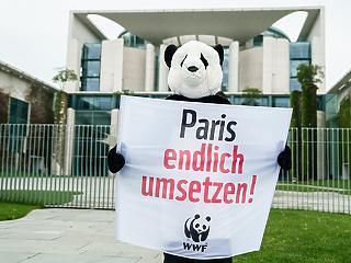 A németek imádják a klímavédelmet – csak fizetni ne kelljen érte