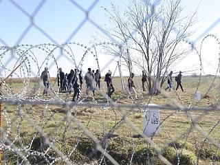 Ismét a magyar határ felé veszik az irányt a migránsok
