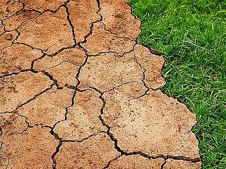 Rábólintott a német kormány a klímavédelmi programra