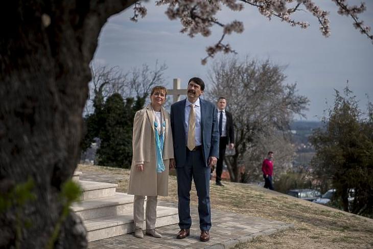 A nap képe: ez a virágzó magyar mandulafa lett Európa legszebbje