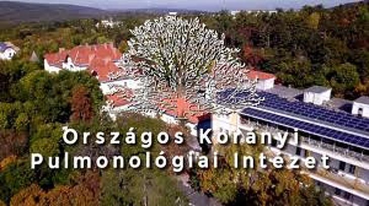 Az Országos Korányi Pulmonológiai Intézetnek van a legkisebb adóssága. Fotó: Facebook