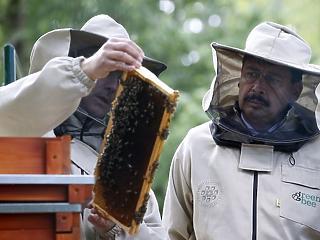 A nap képe: Áder János méhekkel ismerkedett