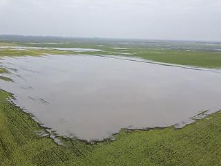 Ez bizony fáj a gazdáknak: belvíz alatt a termőföld