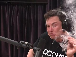 Elon Musknak megint elgurult a gyógyszere, most ő vádolja csalással a tőzsdefelügyeletet